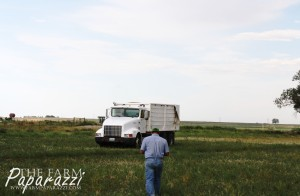 7 Barley Harvest 2013 | The Farm Paparazzi