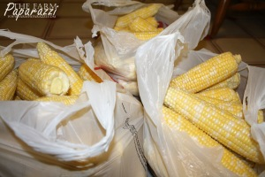 Freezing Corn I | The Farm Paparazzi