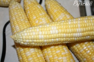 Freezing Corn IX | The Farm Paparazzi
