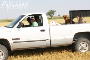 Visiting V | The Farm Paparazzi