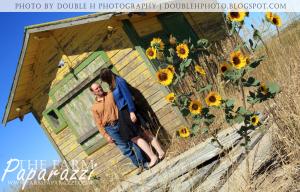 Sunflowers IV | The Farm Paparazzi