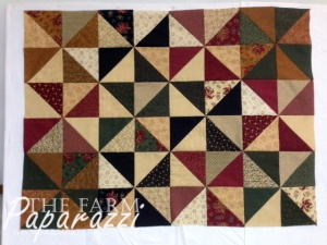 Craftiness | The Farm Paparazzi