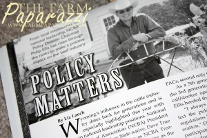 PR Consultant for Hire | The Farm Paparazzi