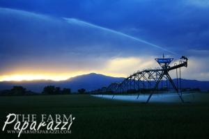 On The Farm | Farm Paparazzi