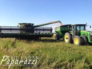 Crop Progress Aug. 2014 | The Farm Paparazzi