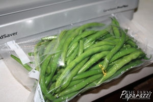 Freezing Green Beans | The Farm Paparazzi