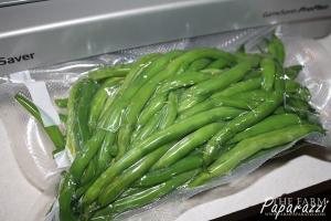 Freezing Green Beans | The Farm Paparazzi