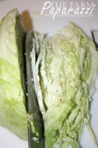 Cabbage Burgers | The Farm Paparazzi