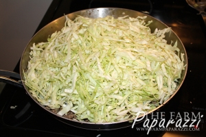 Cabbage Burgers   The Farm Paparazzi