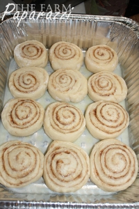 Cinnamon Rolls | The Farm Paparazzi