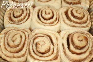 Cinnamon Rolls | The Farm Paparazzi