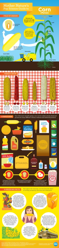 Mother Nature's Pop Science Guide to Corn [Infographic]