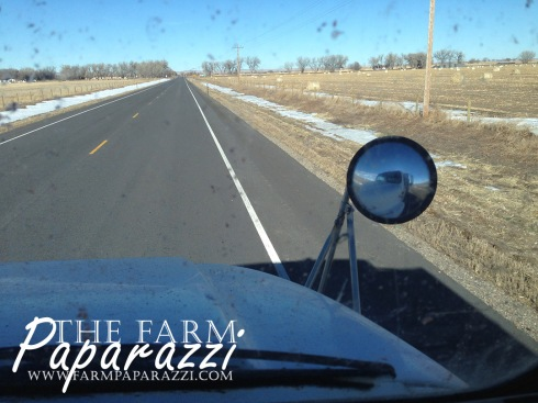 Hauling Corn | The Farm Paparazzi