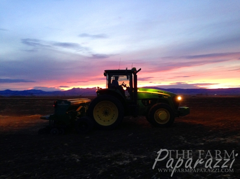Drilling 2015 | The Farm Paparazzi
