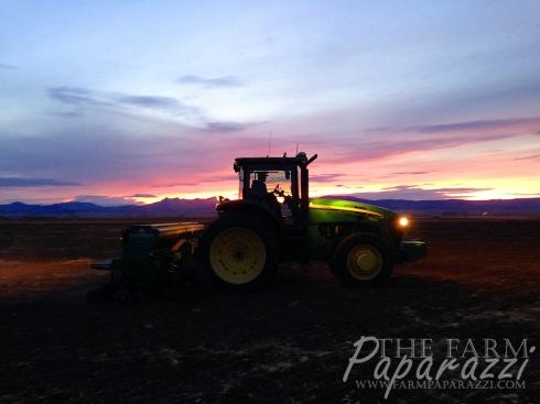 Drilling 2015 | The Farm Paparazzi