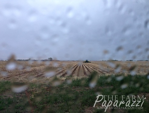 Mother Nature | The Farm Paparazzi