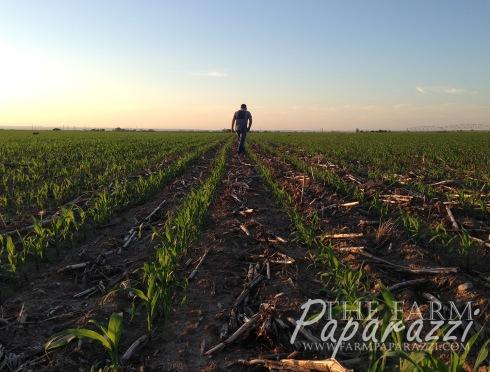 Mother Nature | The Farm Paparazzi
