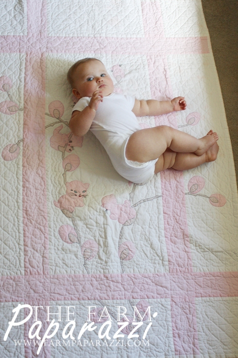 crawling-baby-photo-shoot-9